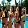 Bikini girls IV - Pictures nr 22
