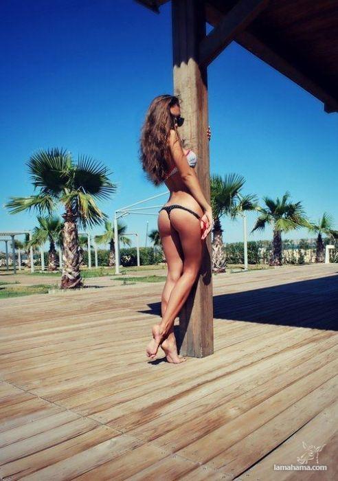 Bikini girls IV - Pictures nr 7