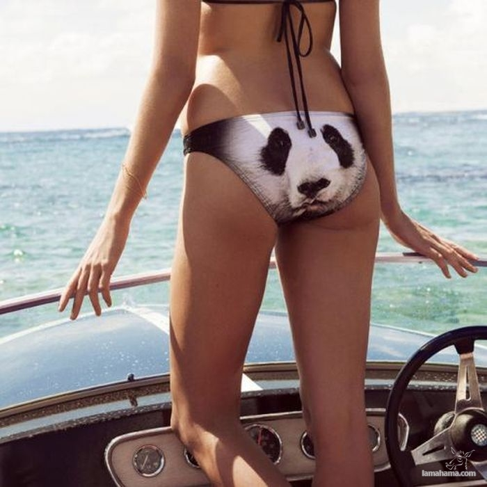 Bikini girls IV - Pictures nr 9