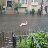 People having fun with Hurricane Irene - Pictures nr 11