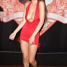 A Skin Tight Dresses - Pictures nr 1260