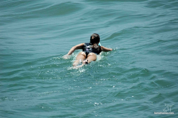 Beautiful girls surfing - Pictures nr 19