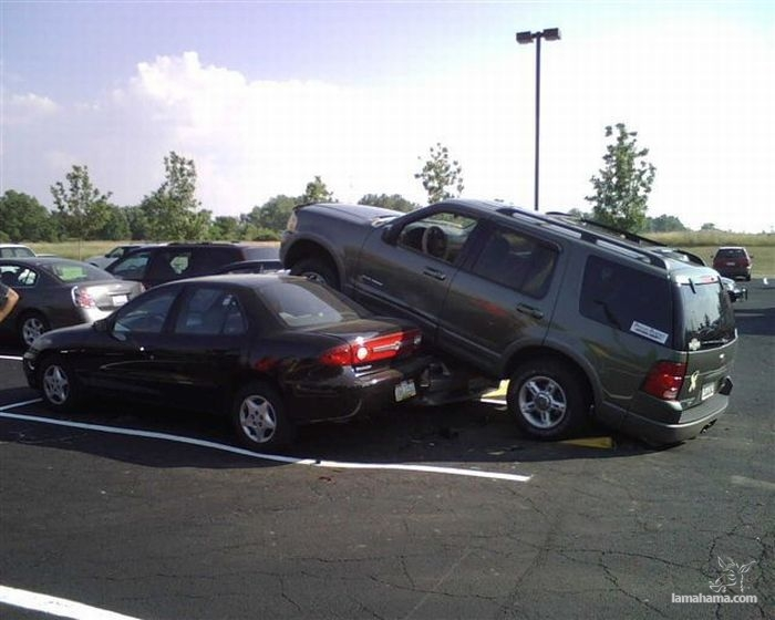 Masters of parking - Pictures nr 1