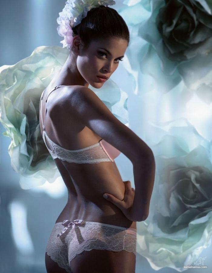 Models - Pictures nr 11