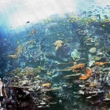 Największe na świecie akwarium - Zdjecie nr 4