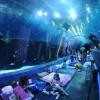 Największe na świecie akwarium - Zdjecie nr 6