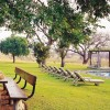 Wonderful holiday in Africa with Safari - Pictures nr 9