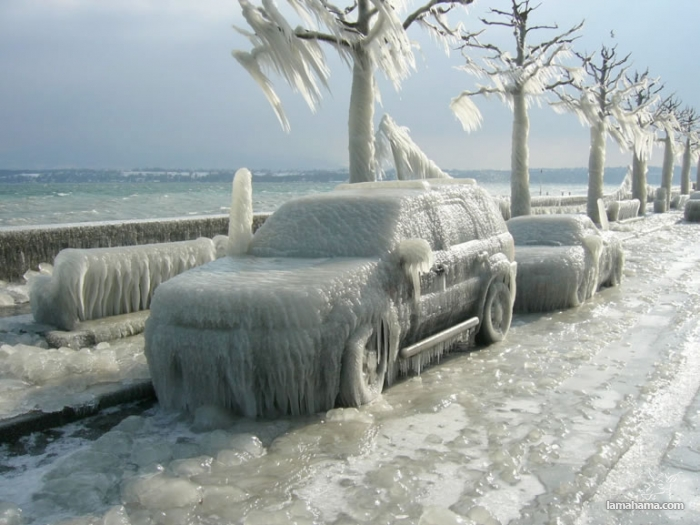 Beautiful effects of ice storm - Pictures nr 1