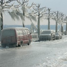 Beautiful effects of ice storm - Pictures nr 3