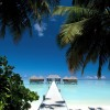 Enjoy the beautiful Maldives - Pictures nr 3