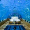 Enjoy the beautiful Maldives - Pictures nr 4