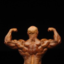Bodybuilders - Pictures nr 25