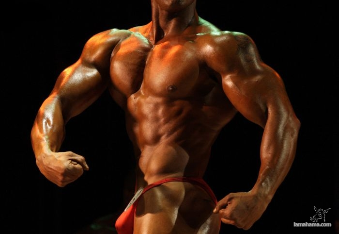 Bodybuilders - Pictures nr 29