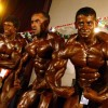 Bodybuilders - Pictures nr 2