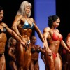 Bodybuilders - Pictures nr 3