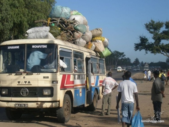 Only in Africa - Pictures nr 43