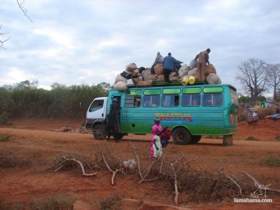 Only in Africa - Pictures nr 45