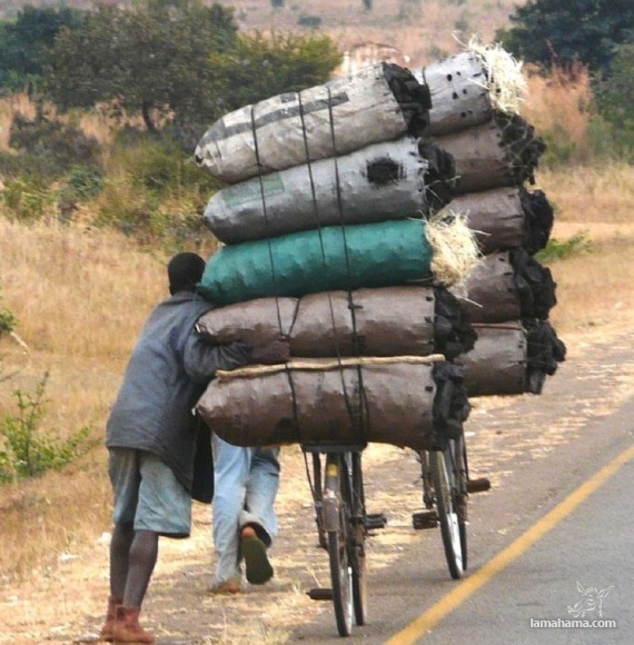Only in Africa - Pictures nr 55