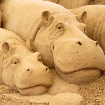 Amazing sand sculptures - Pictures nr 335
