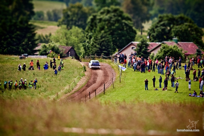 Rally - Pictures nr 19