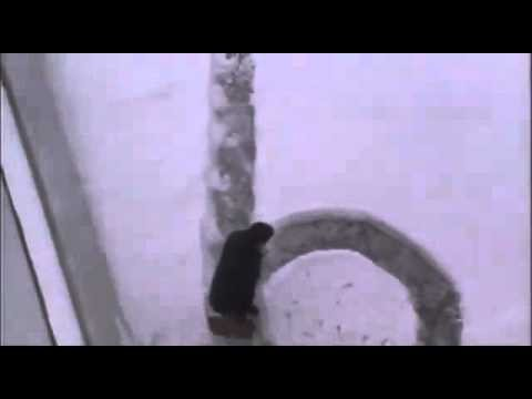 Snow joke - the path in the snow