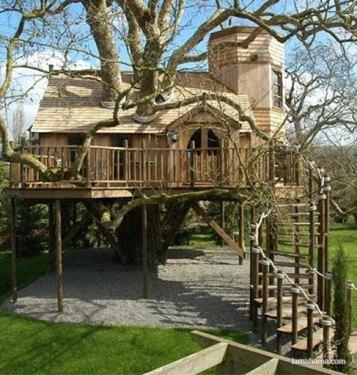 Awesome Treehouses - Pictures nr 1