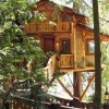 Awesome Treehouses - Pictures nr 10