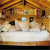 Awesome Treehouses - Pictures nr 12