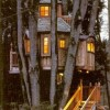 Awesome Treehouses - Pictures nr 13