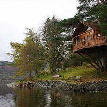Awesome Treehouses - Pictures nr 3