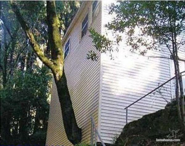 Construction Fails - Pictures nr 6