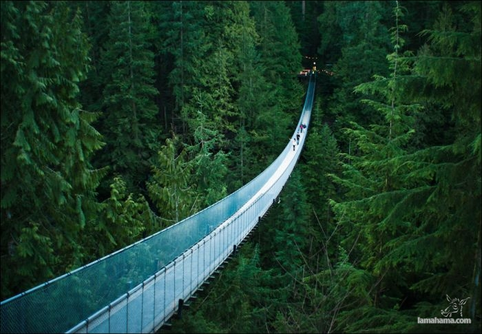 Great Suspension Bridge - Pictures nr 1