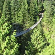 Great Suspension Bridge - Pictures nr 2