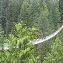 Great Suspension Bridge - Pictures nr 3