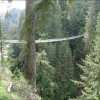 Great Suspension Bridge - Pictures nr 4