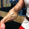 Big Muscle Guys - Pictures nr 13