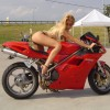 Ducati girls - Pictures nr 4