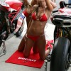 Ducati girls - Pictures nr 6