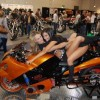 Ducati girls - Pictures nr 9
