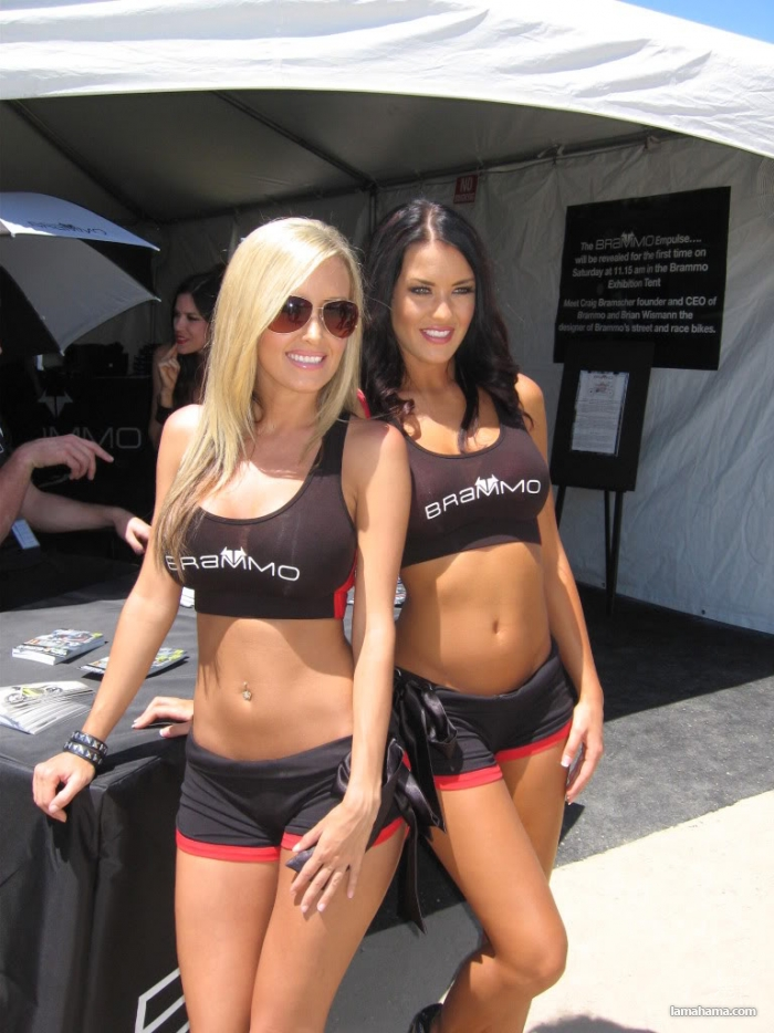 Girls from Auto Show - Pictures nr 1