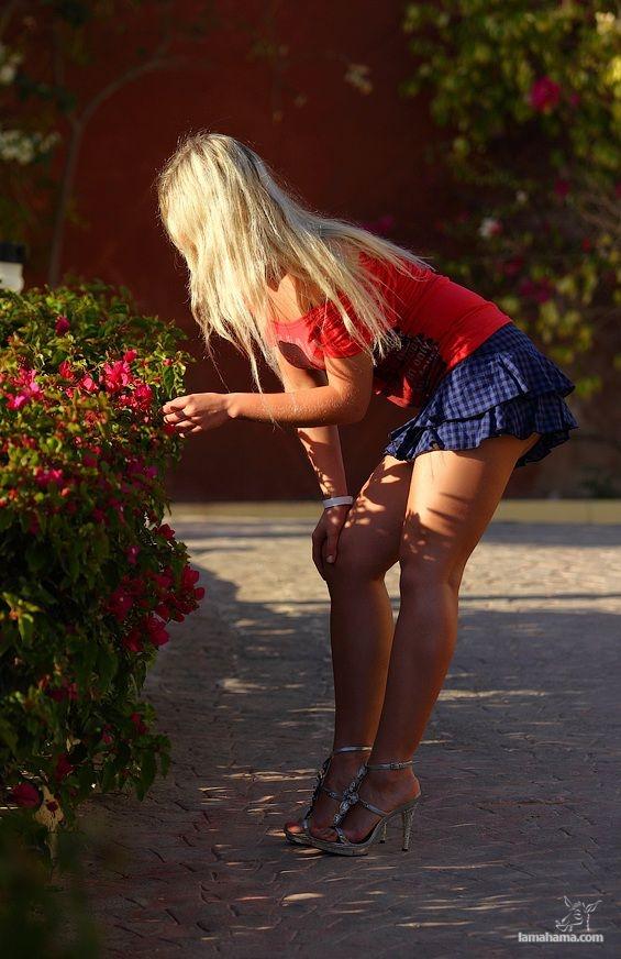 Сексуальные девушки фото брюнетки не видно лица в коротких юбках
