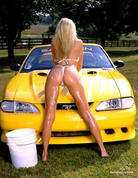 Sexy girls washing cars - Pictures nr 36