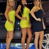 Brazilian Booth Babes from Auto Show - Pictures nr 14