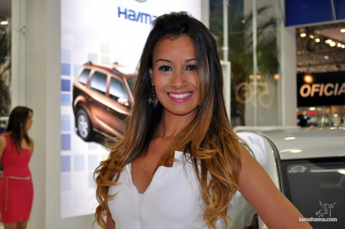 Brazilian Booth Babes from Auto Show - Pictures nr 20