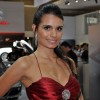 Brazilian Booth Babes from Auto Show - Pictures nr 21