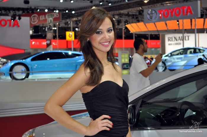 Brazilian Booth Babes from Auto Show - Pictures nr 23