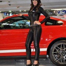 Brazilian Booth Babes from Auto Show - Pictures nr 3